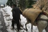 Winter Season Continue to March
