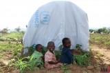 Congo Refugee Kids in Uganda