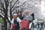 Enjoying Cherry Blossom on Rickshaw