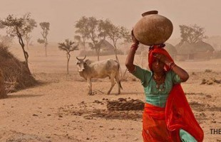 Drought and Famine in Thar Desert of Pakistan: INGOs stay away from helping starved and ailing children