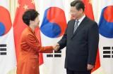 Senior official emphasizes Sino-South Korean cooperation