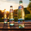10 Interesting Facts About Borjomi Mineral Water