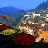 Colorful Scenes from China