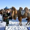 Winter Nadam and camel fair held in Inner Mongolia