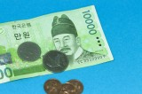 Seoul closely monitoring the won's decline