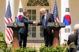 Trump to visit S. Korea for talks on N. Korea, alliance