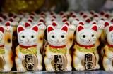 Over 6 in 10 Koreans taking part in boycott of Japanese goods: poll