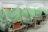 Dozens die of Dengue fever; 50,000 patients test positive across Pakistan