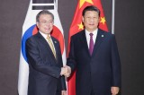 Xi 'almost certain' visit S. Korea in first half of next year