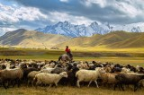 Northern Kyrgyzstan, Con Dao (Vietnam), Isphahan (Iran) selected by NYT among top places to visit in 2021