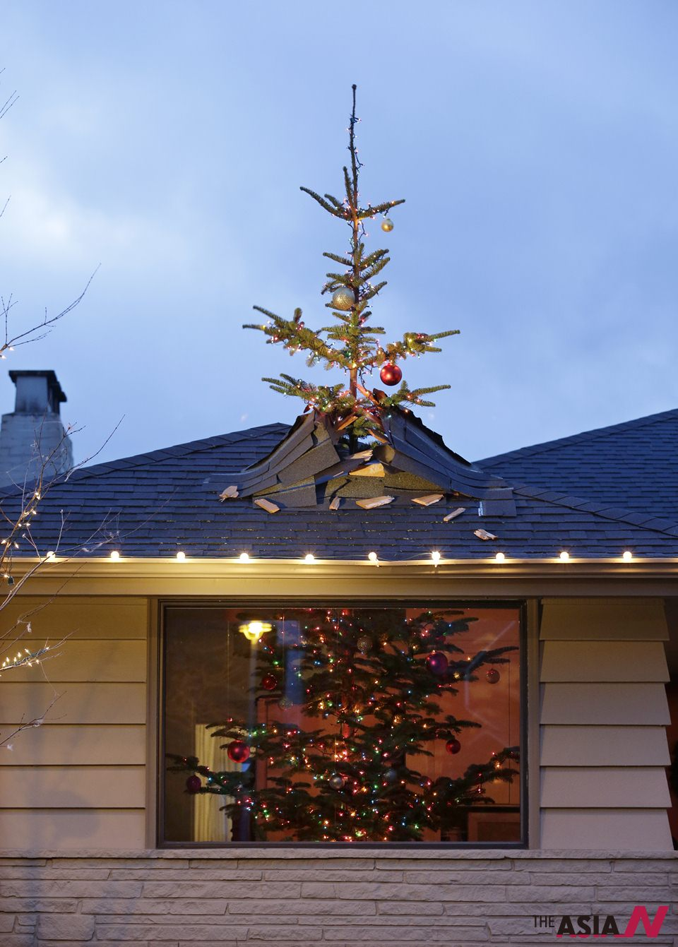 Christmas Decorations Tree Through Roof : Christmas tree made to look crashing through roof by
