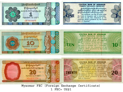 Abolishes Surrogate Foreign Currency