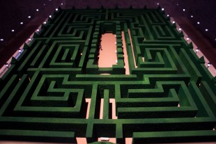 The garden maze in 'The Shining'.