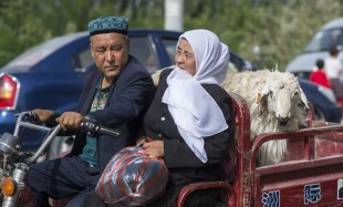 (160911) -- QIRA, Sept. 11, 2016 (Xinhua) -- A couple carry a sheep back home from a bazaar in Qira County, northwest China's Xinjiang Uygur Autonomous Region, Sept. 11, 2016. Local Muslims prepared for the upcoming Corban Festival, also known as Eid al-Adha or the feast of the sacrifice, in various ways. (Xinhua/Jiang Wenyao) (wyl)
