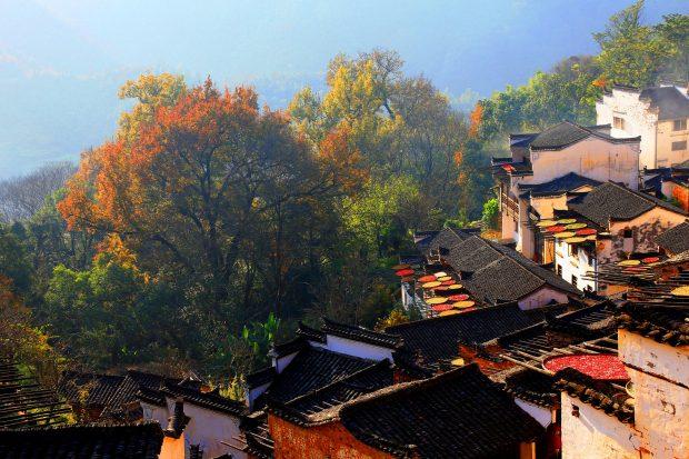 WUYUAN, Dec. 9, 2016 (Xinhua) -- Photo taken on Dec. 8, 2016 shows the autumn scenery in the ancient village of Huangling in Wuyuan County, east China's Jiangxi Province.  (Xinhua/Shi Guangde) (zwx)