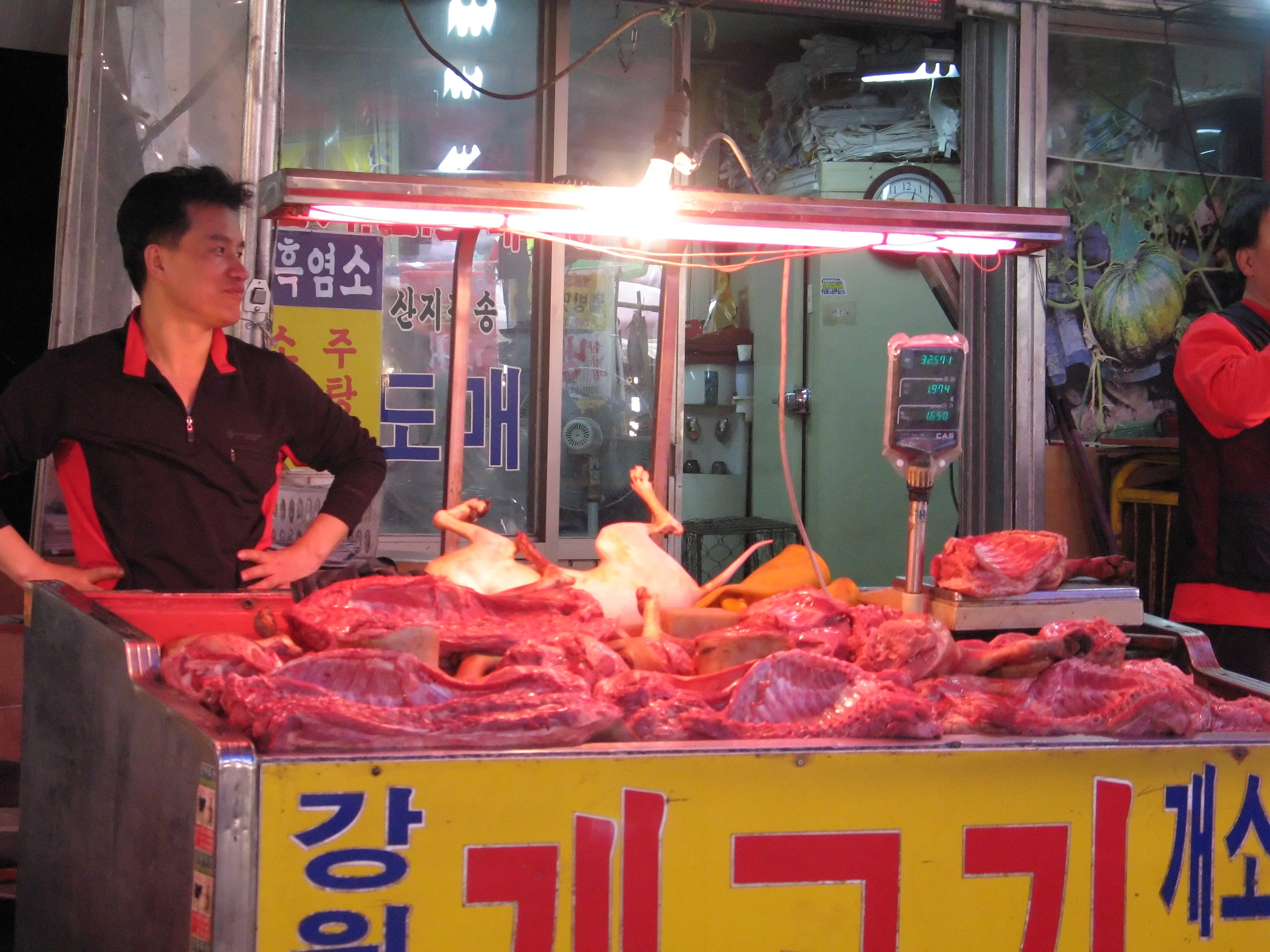 How Korea Eats Dogs 30