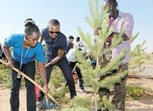 African media delegates plant trees in Kubuqi desert, July 2017. Photo by Ma Gengping
