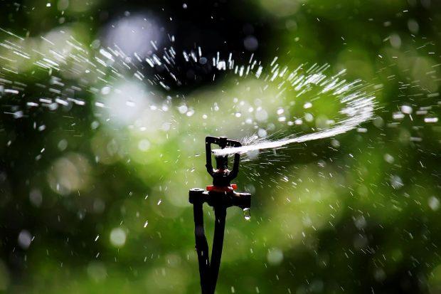 1280px-sprinkler_irrigation_-_sprinkler_head