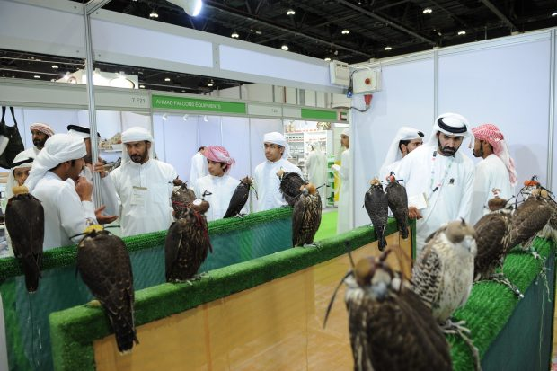 The fascinating world of hunting to come alive at Abu Dhabi exhibition