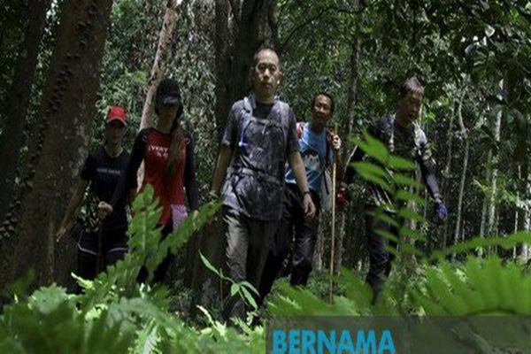SAR efforts for Nora Anne Quoirin receive boost from hikers - Bernama
