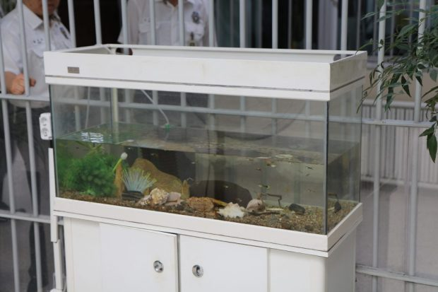 "On the first floor of the penitentiary building, there is an aquarium where tropical fishes are kept. The penitentiary said that ""although it is a policy not to place objects made out of glass, we installed the aquarium for the inmates to share the external view of life can be felt together."" (Photo by Jaeyoung Yang)"