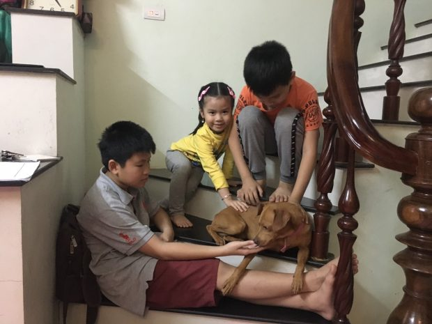 some-vietnamese-children-play-with-a-pet-dog