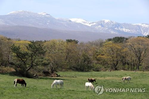 Mount Halla on Jeju Island. (Yonhap)