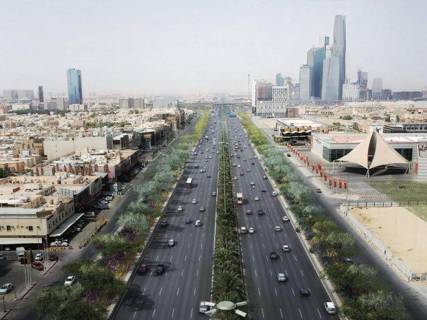 Saudi capital Riyadh set to overcome climate challenges, become greener