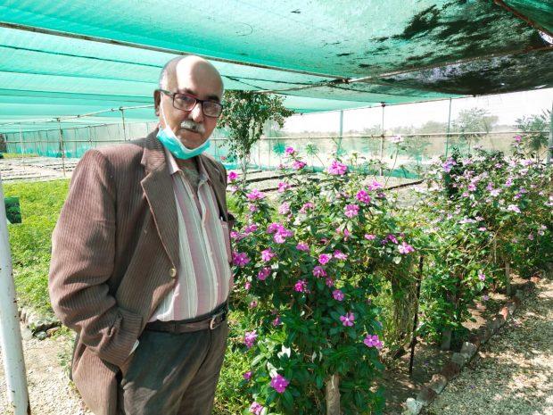 Author at flower nursery